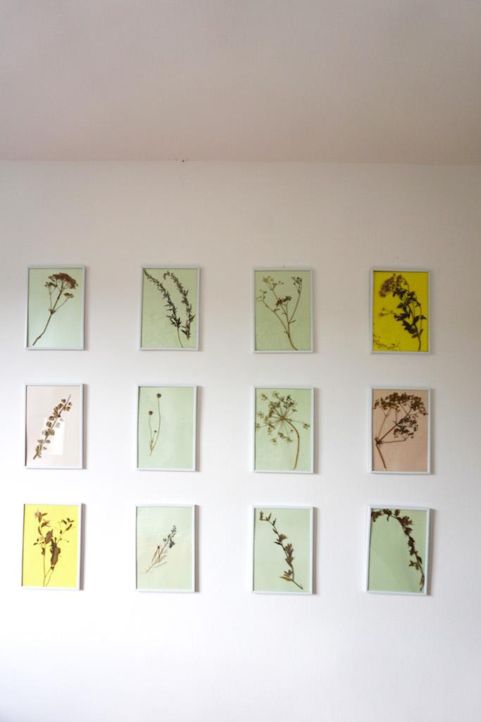 spavaca soba herbarium